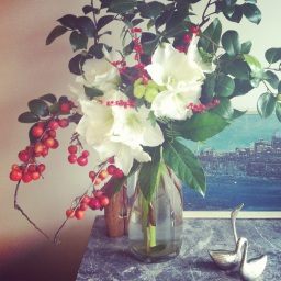 Crab Apples and Camellia