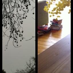 Spring pompoms