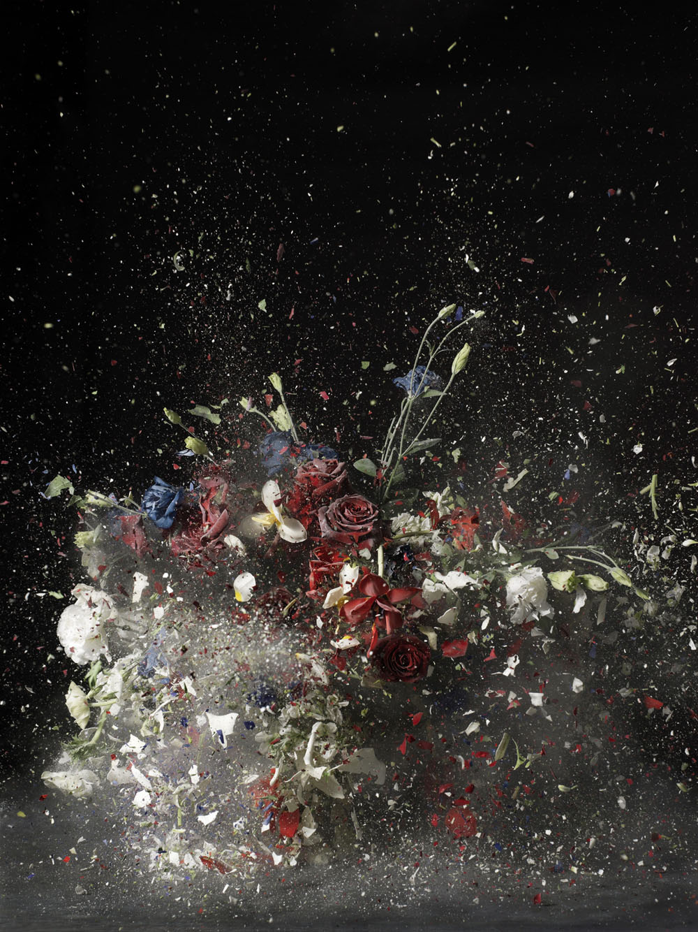Ori Gersht 'Blow Up'